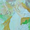 20060804 095.jpg