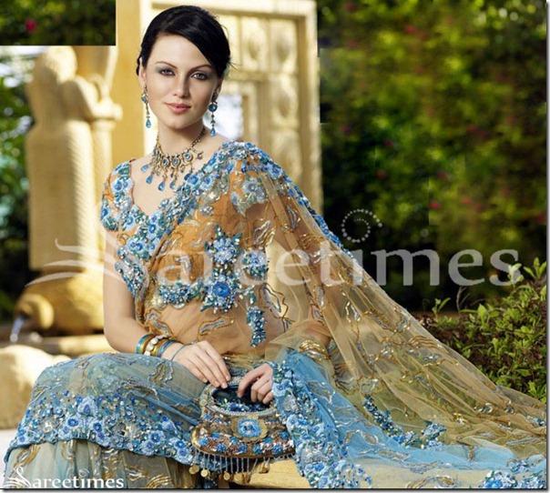 Yana_Gupta_Designer_Sari