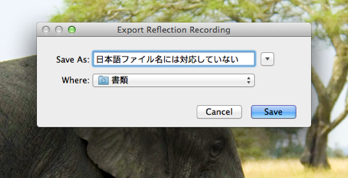 Export Reflection Recording