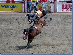 9370 Alberta Calgary - Calgary Stampede 100th Anniversary - Stampede Grandstand - Calgary Stampede Rodeo Novice Bareback Championship