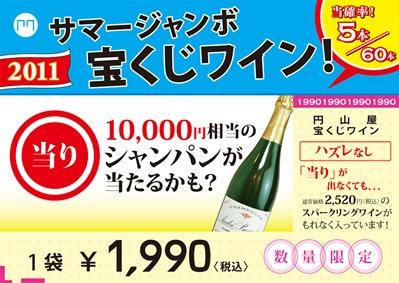 2011.07.サマージャンボ宝くじ A3
