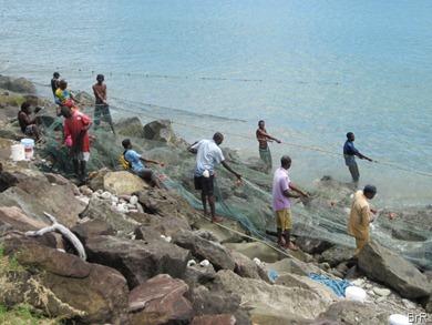 Grenada_Goyave_es_geht_los