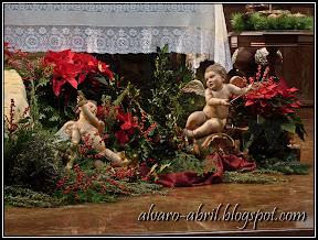 carmen-coronada-malaga-floral-vestimenta-navidad-2011-alvaro-abril-(3).jpg