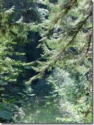 lewis river falls 03