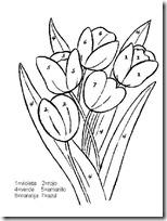 actividades primavera (11)