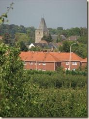 Zicht op de toren van de kerk van Wilderen vanuit Halle-Booienhoven