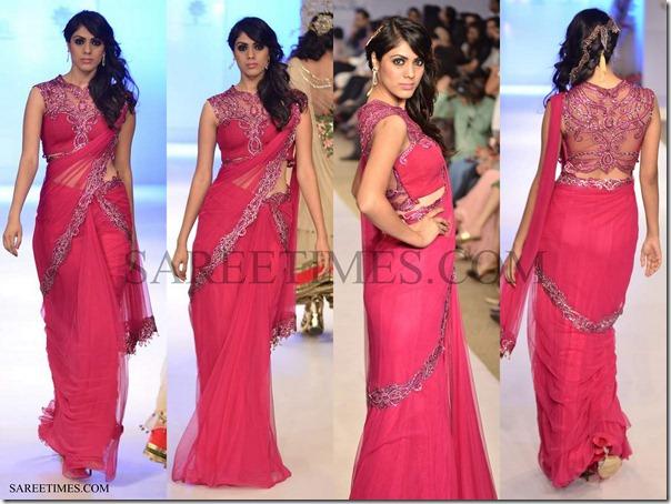 Anjali_Arjun_Kapoor_Saree