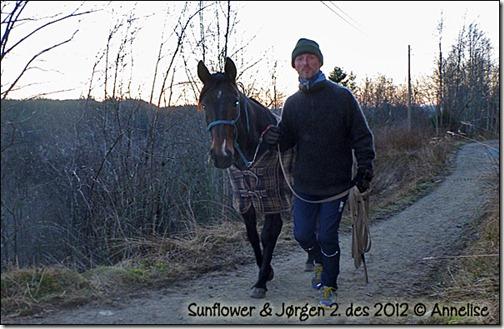 2012-2des-sun_01
