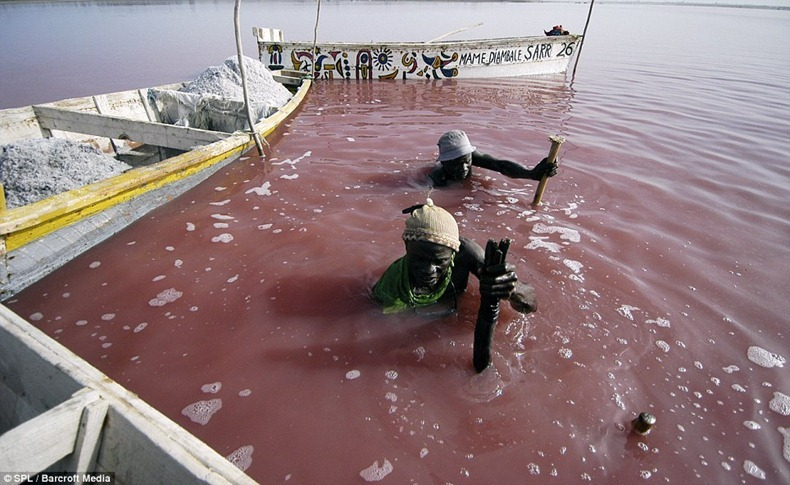 lake-retba-4