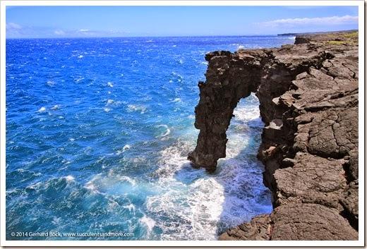 140724_HawaiiVolcanoesNP_0066