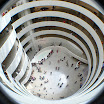 New York City - Guggenheim Museum