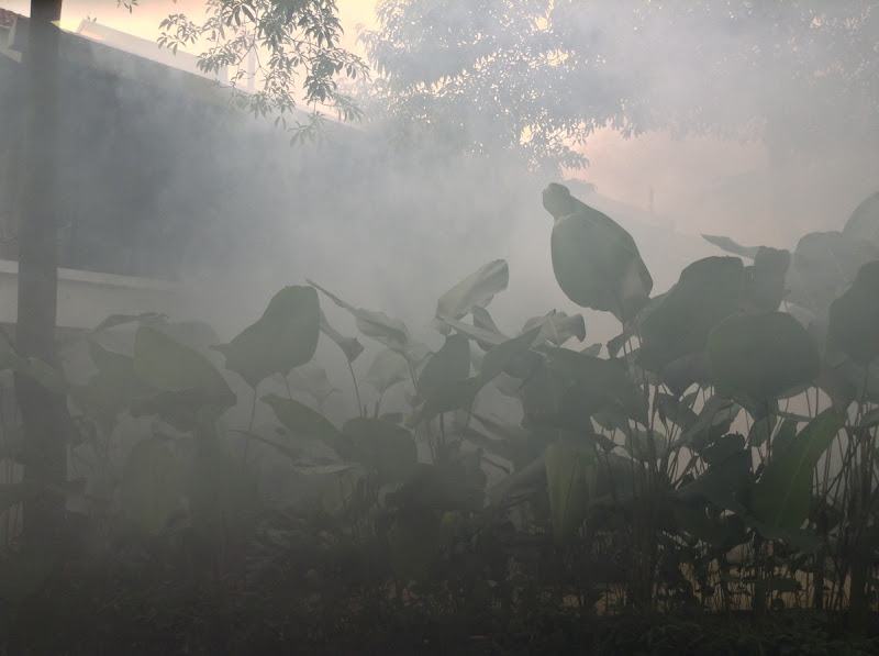 Thermal fogging to kill insects