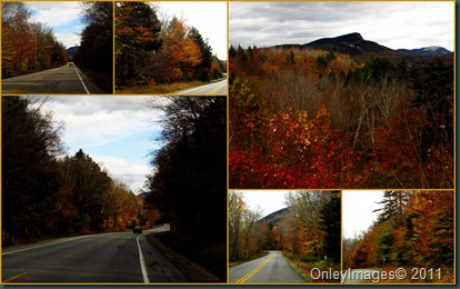 highway views collage2