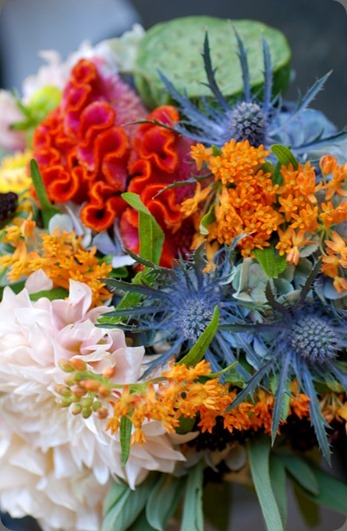 DSC_1568-685x1024 fleur chicago
