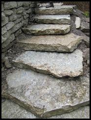 STEPS! 011