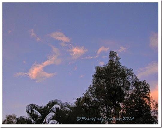 07-13-sunrise3