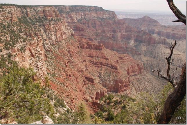 05-17-13 B Grand Canyon North Rim Drive (158)