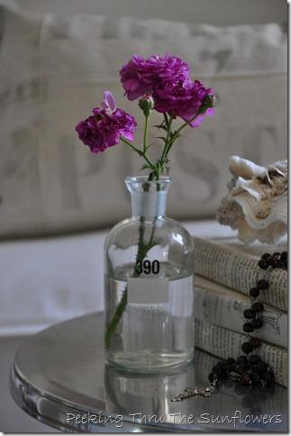 roses 002