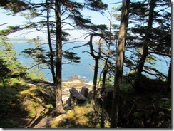 Walk from Thunder Hole to Otter Point