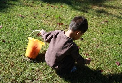 2011-10-27_019