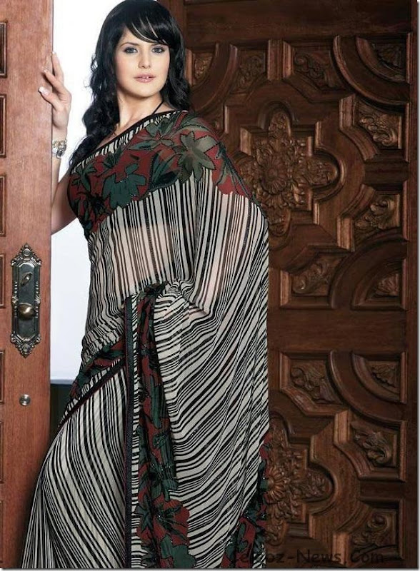 zarine-khan-saree-16