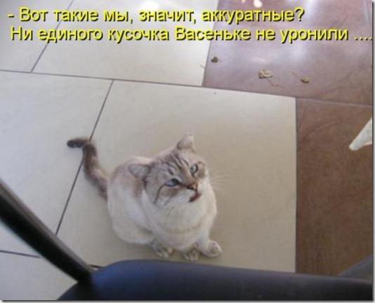 5c61da267d02c560c8d972db01a_prev
