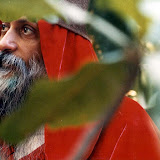 13.Waves Of Love - osho419.jpg