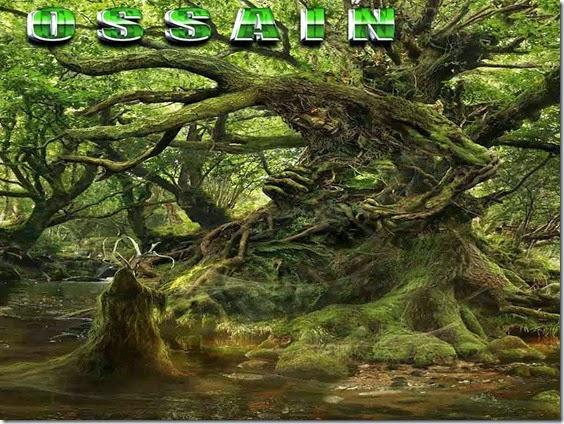 Orixá Ossain - Ossayn - Ossãe - Deus das folhas - ervas senhor curador -