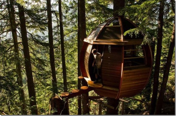 awesome-treehouses-3