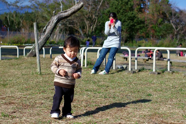 写真-2012-11-18-13-32-35.jpg