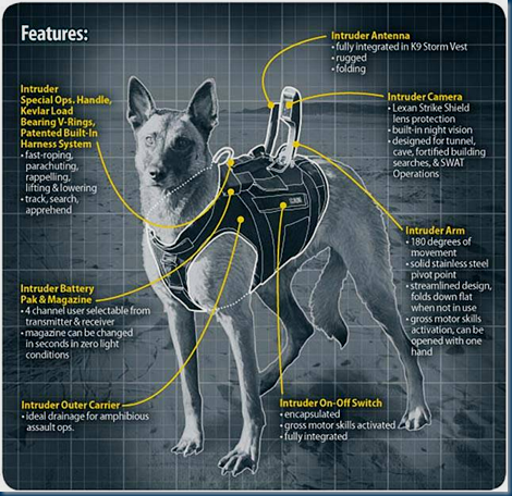 K9 Intruder Tactical Assault Suits