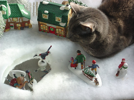 Cat and snow scene with skater planting face on ice.