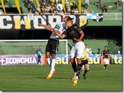 Botafogoiljpg