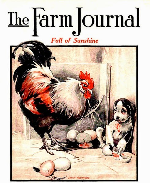 Farm Journal 1921 2