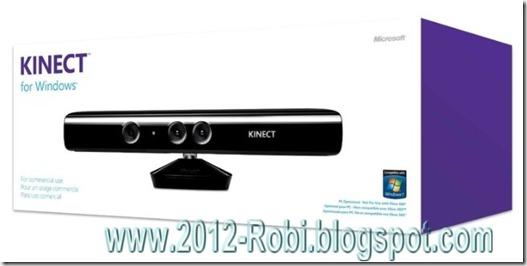 kinect2012-robi_wm