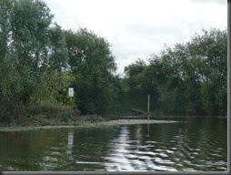River Severn 2014 011