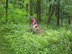 Gdzieś na zółtym, przejeżdża się centralnie przez leśny cmentarz. Klimatyczne. Park Krajobrazowy Dolinki Krakowskie.