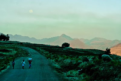 SouthernAfrica338.jpg