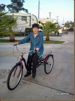 Mom & bicycle