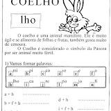 coelho_gif.jpg