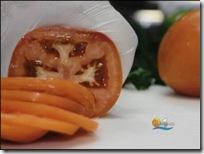 tomato[1]
