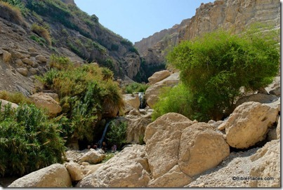 En Gedi Nahal David with waterfalls, tb052307908