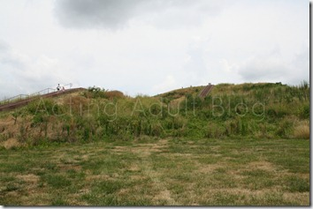 Cahokia Mounds 9