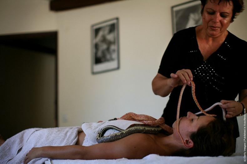 snake-massage5