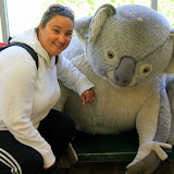 Cuddling With A Slightly Larger Koala - Phillip Island, Australia