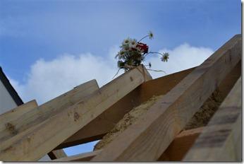 annexe de la forge  charpente 6 juin 2012 042