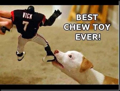 Best Chew Toy