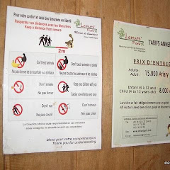 Lemurs Park::IMGP4464