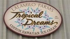 ハワイ島のトロピカルドリーム