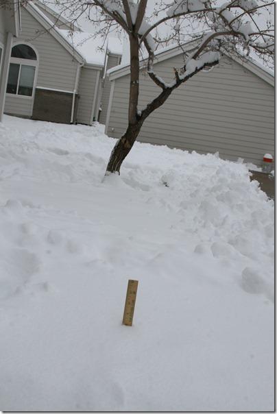 2013-04-15 Snow! (6)